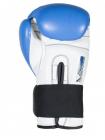 Боксерские перчатки BAD BOY SERIES 2.0 синие