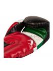 Боксерские перчатки VENUM ELITE MEXIQUE черные
