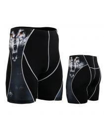 Компрессионные шорты FIXGEAR P2S-B18