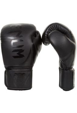 Перчатки для бокса Venum Challenger 2.0 Neo/Black