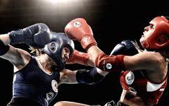 Как выбрать перчатки для тайского бокса?