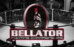 Гран-при Bellator в полусреднем весе – первые новости