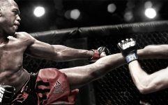 Выбор перчаток для тренировок MMA