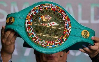 Всемирные боксерские организации и их чемпионы